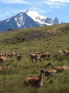 Chile Overseas Adventure Travel