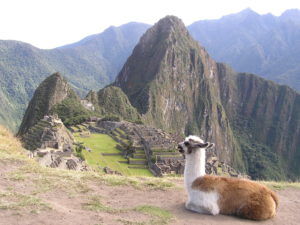 Machu Picchu Overseas Adventure Travel discount